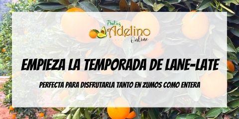 Comprar Naranja Lane-Late